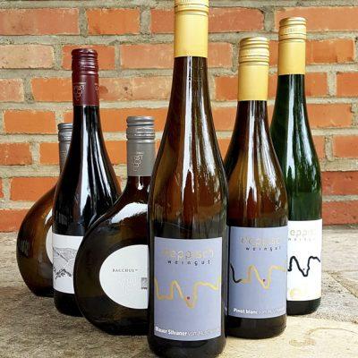 Große Bio Weinprobe
